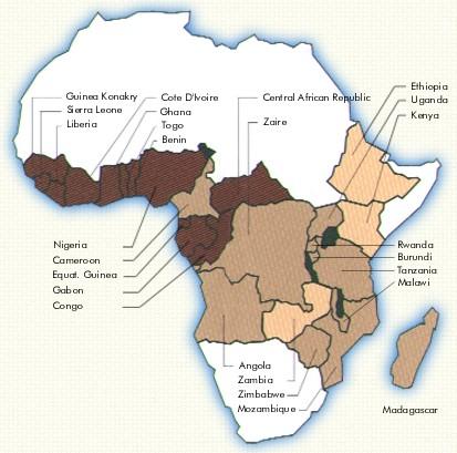 Coffees of Africa   Moledina Commodities Inc.